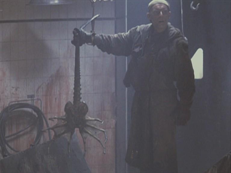 Clases de Xenomorfos (saga Alien) Latest?cb=20120118103934