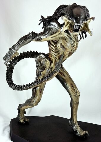 File:Predalien full.jpg