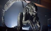 Ridged Alien