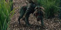 Hell-Hound