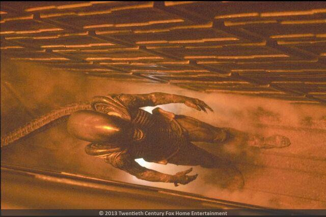 File:Alien 3 Full Xenomorph.jpg