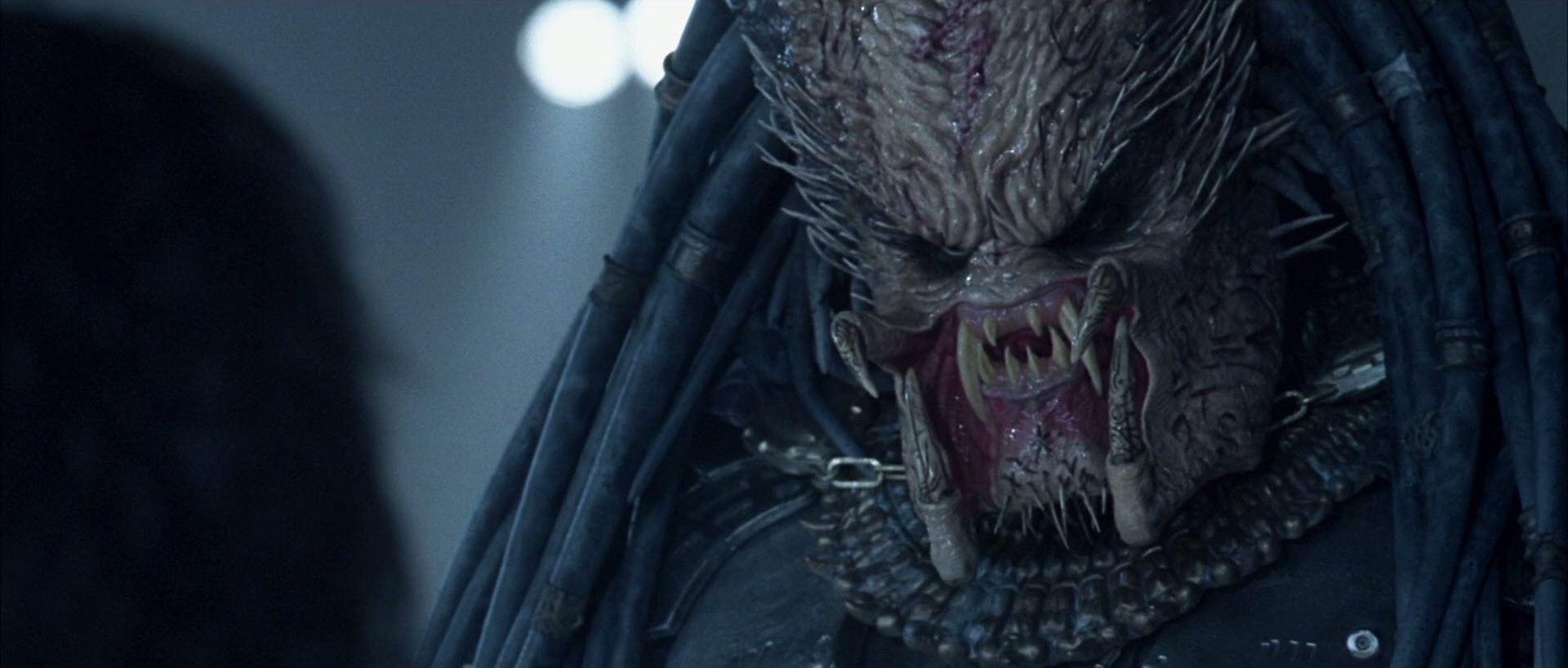 Xenomorph Vs Deacon Ancient (Predator)   A...