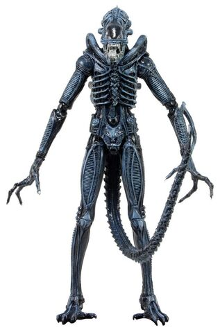 File:NECA Aliens Series-2 03.jpg