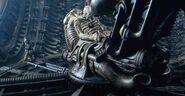 PILOT Alien 043