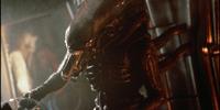 Xenomorph XX121 (Alien)