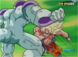 Super Saiyan Goku & Frieza Fighting 3