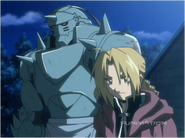 The Elric Brothers Abandon the Stray Cat They Find