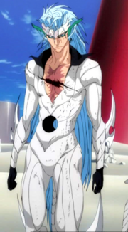 Grimmjow's Released form