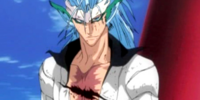 Grimmjow Jaegerjaquez/Powers & Abilities