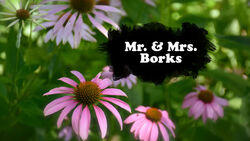 Mr Borks and Mrs Borks TC