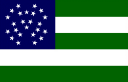 Nypd flag