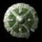 Shield of Harmony item icon BG2EE
