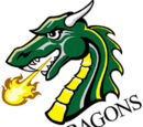 Tiffin Dragons