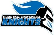 Mount-st-mary-college-new-york-logo