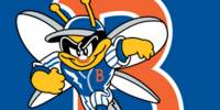 Binghamton Mets