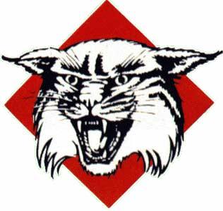 File:Davidson Wildcats.jpg