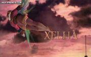 Xelha (10)