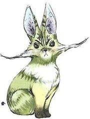 Bunnycat