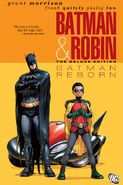 Batman and Robin Reborn