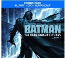 Batman: The Dark Knight Returns Part 1 (film)