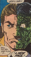 Two-Face-Binary Brains