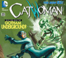 Catwoman (Volume 4) Issue 23