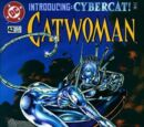 Catwoman (Volume 2) Issue 42
