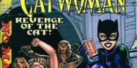 Catwoman (Volume 2) Issue 77