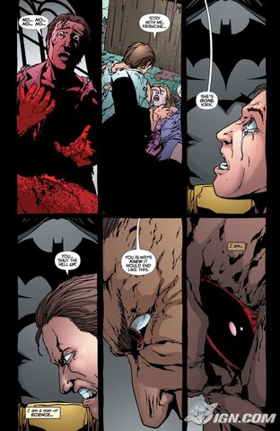 File:Batman-battle-for-the-cowl-man-bat-20090326042712813.jpg