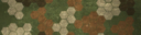 BF4 Hexagon Autumn Paint