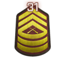 File:Rank 31.png