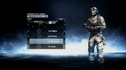 M417 Third Person