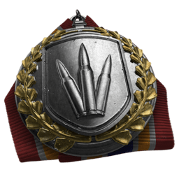 File:Assault Rifle Medal.png