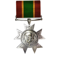 File:Legion of the Wolf Medal.png