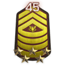 File:Rank 45.png
