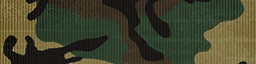 File:BF4 ERDL Camo.png