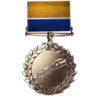 Support Order of Valor Medal