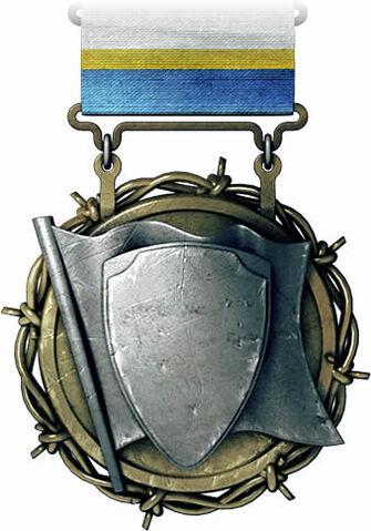 File:Flag Defender Medal.jpg