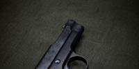 Modello 1915 Pistol (Codex Entry)