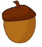 Acorn asset