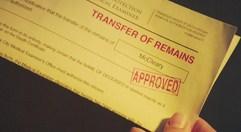 Transferpaper