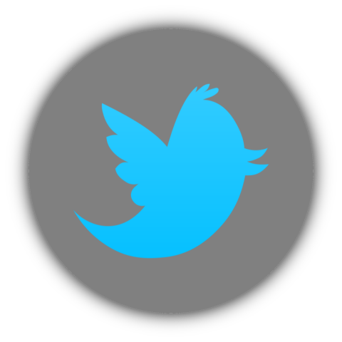 File:480px-Twitter icon.png
