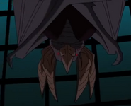 Bat upside down