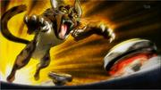 Lynx vs zurafa