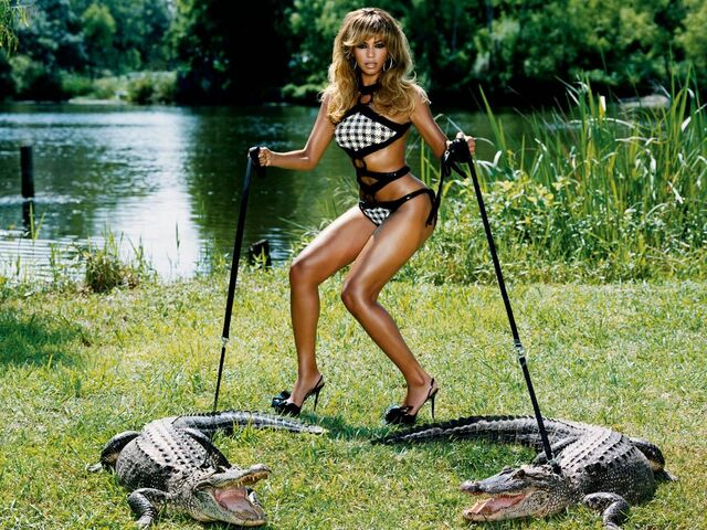 File:Beyonce Alligators B-776097.jpeg
