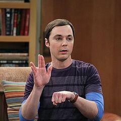 Sheldon explains