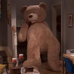 Raj bough a BIG bear.