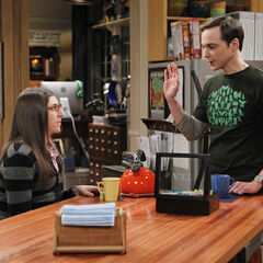 Sheldon and Amy in his kitchen.