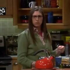 Amy frowns to hear her plans with Sheldon may be disrupted.