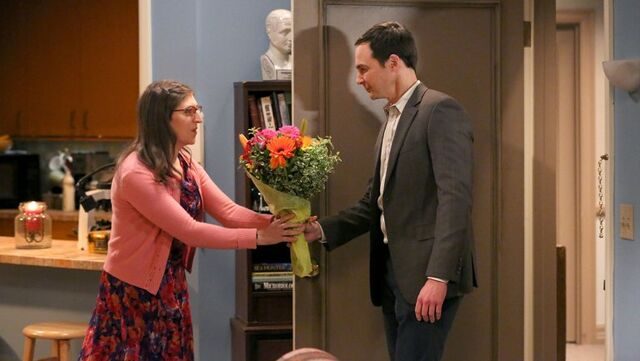 File:The big bang theory s09e11 still -2.jpg